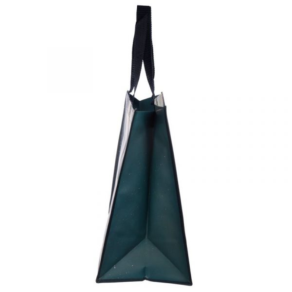 Kim Haskins Rainbow Cat Shopping Bag